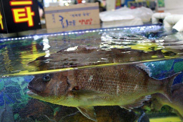 Рыбный рынок (Инчхон)